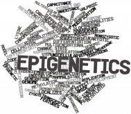 Epigenética 1