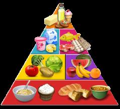 piramide alimentos ricos en calcio