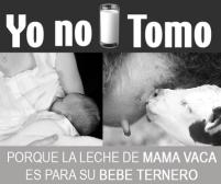 yo-no-tomo3[1]